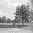 Üldaavde, dolomiit. Foto: H. Kõlar, 1974