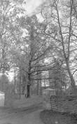 Üldvaade. Foto: Ilves, 1957