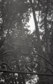 Vapp von Phalenite perekonna  matuseplatsi väraval Ilumäe kalmistul. Foto: Veljo Ranniku 1964