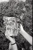 Osa Palu mõisa peahoone saali kapiteelist. Foto: Veljo Ranniku 1968