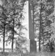 Vaade monumendile. Foto: E. Reiljan, 1969