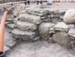 Tallinna Jaani seegi asulakoha arheloogilised kaevamised Foto: J. Vali 11.10.2001
