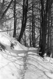 """Peatskivi """"Kalevipoja säng"""". Foto: V. Ranniku 1960"""