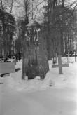 Tõnis Laksi hauasammas Alatskivi surnuaial. Foto: V. Rannik 1960