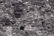 Laskeava Põltsama linnuse välismüüris.  Foto: V. Ranniku 1962