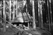 """""""Põrgupõhja talu"""" (filmidekoratsioonid võttekohal). Foto: V. Ranniku 1965"""