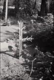 Sepirist Viljandi kalmsitul. Foto: V. Ranniku 1971