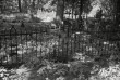 Sepisaed Viljandi kalmistul. Foto: V. Ranniku 1971