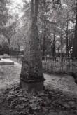 Hauamonument Viljandi kalmistul. Foto: V. Ranniku 1971