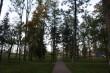 Väätsa mõisa park Foto: J. Vali 30.09.2010